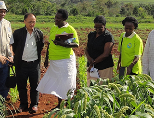 Helping Uganda's Agriculture Grow in a Changing World